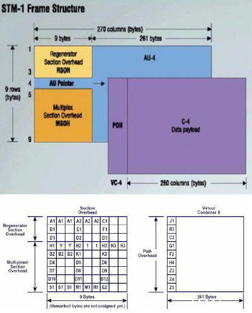 Arsitektur Dan Karakteristik Jaringan SDH (Synchronous Digital Hierarchy)