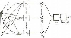 Perceptron,Lapisan Jaringan Syaraf Tiruan (Neural Network),Jaringan Syaraf Tiruan (Neural Network),perceptron Jaringan Syaraf Tiruan,Gambar Perceptron Jaringan Syaraf Tiruan (Neural Network),Lapisan Pada Jaringan Syaraf Tiruan (Neural Network),Fungsi aktivasi,neural network,lapisan input,lapisan tersembunyi,lapisan output