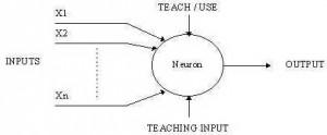 Gambar Sebuah Sel Syaraf Sederhana,model Sel Syaraf,gambar Sel Syaraf,struktur dasar Sel Syaraf
