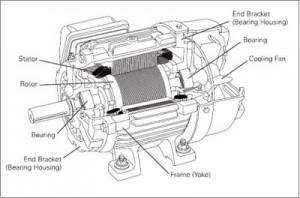 Motor Listrik