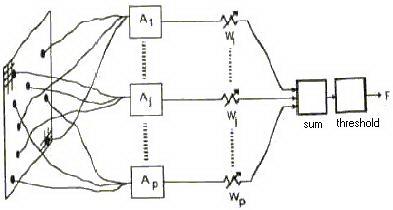 Perceptron Dan Lapisan Jaringan Syaraf Tiruan (Neural Network)